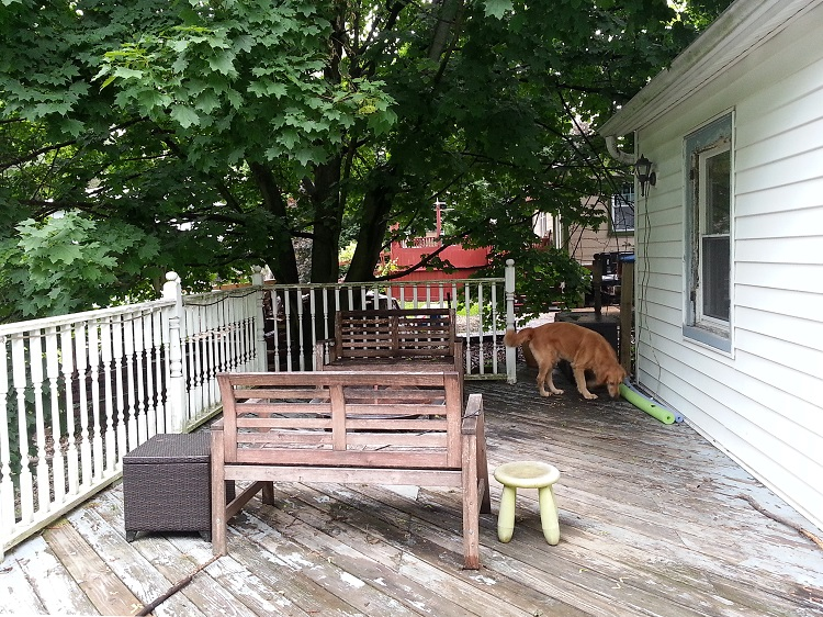 Deck-today (1)