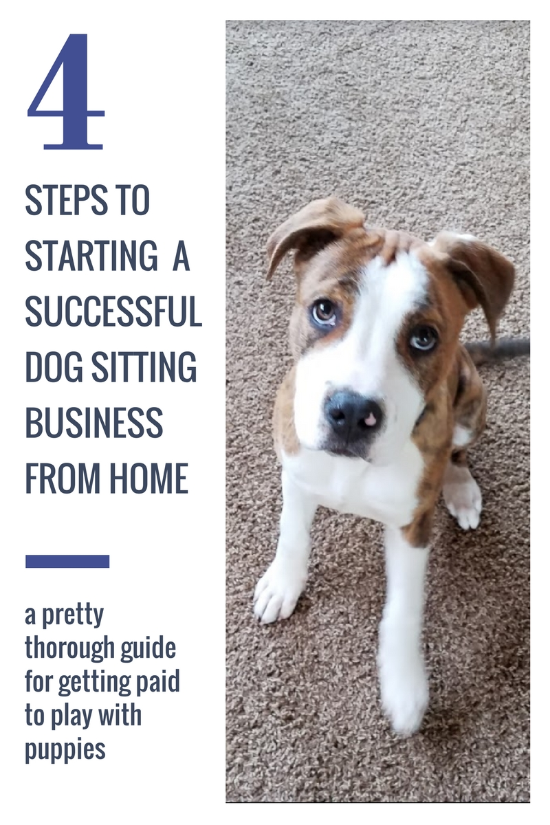 how to start a dog sitting business at home