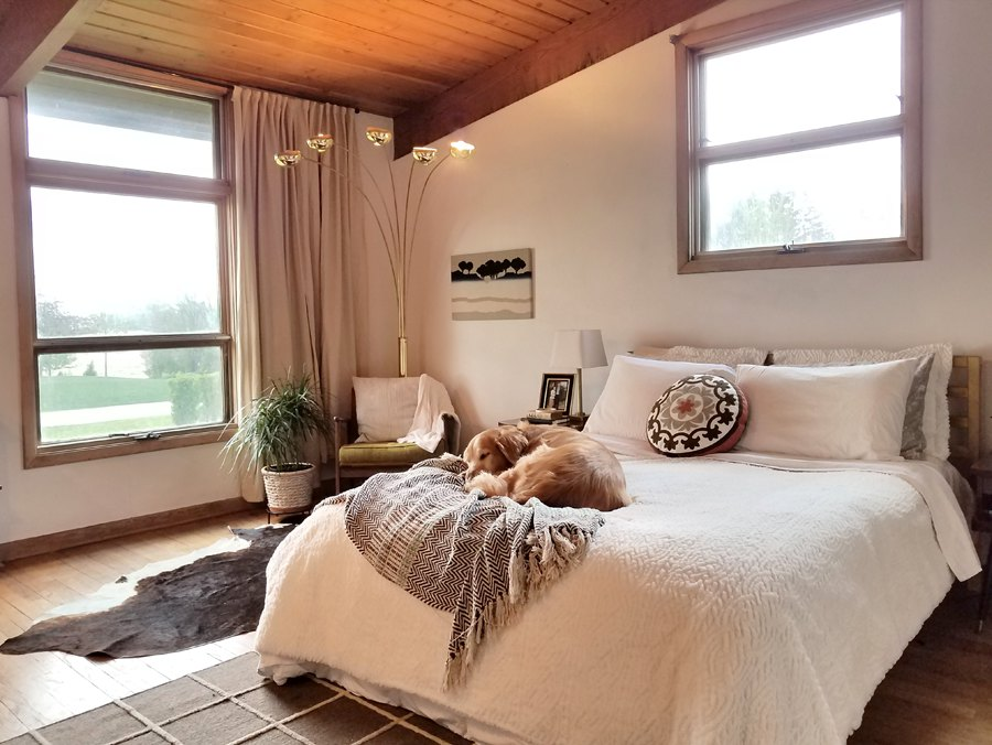 mid century modern bedroom with dog on bed house plant arch lamp